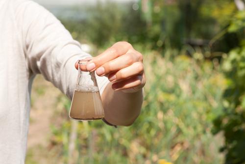 ¿Qué es la consultoría ambiental?