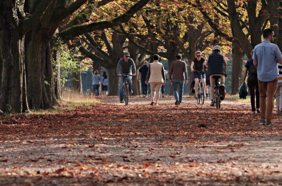 Adiós al verano y bienvenido el otoño