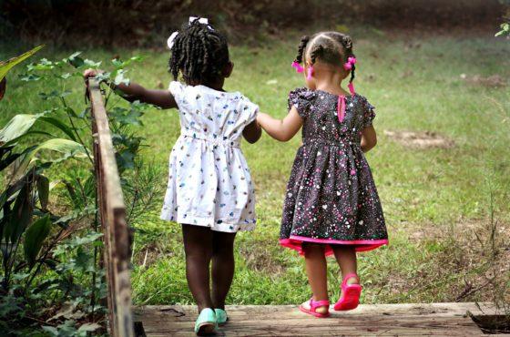 La educación y la importancia de la plantación